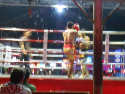 2013年12月、タイ(チェンマイ)&チャイナ(昆明) その2
