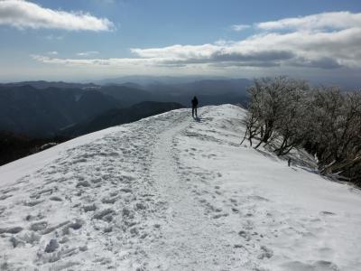 樹氷輝く 綿向山 2014