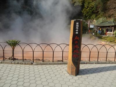 〈高速バスシリーズ〉 高速バスで大分へ、 広交バス-広島発で徳山港から周防灘フェリーに乗っかり国東半島周辺経由のバスと血の池地獄の旅 (後編) 。
