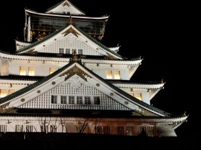 浪花のことは、夢のまた夢・・・大阪城を彩る3Dマッピングとイルミネーションand世界最大級大観覧車から見る浪花の街は