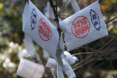 20140113 大宮 のどかに休日散歩 いづみやさんとか、氷川神社とか