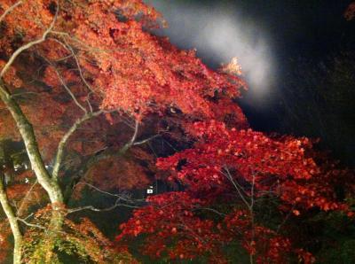 伊香保温泉で紅葉のライトアップ
