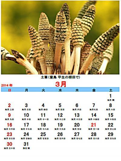 Q暦カレンダー01401