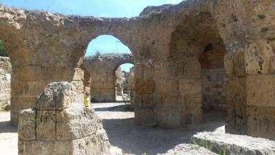 ヨーロッパ周遊 チュニジア(地中海クルーズ)