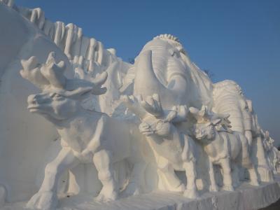 ハンパ無い!極寒のハルビン1★太陽島雪祭り(太陽島雪博会)