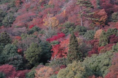 紅葉の絶景、小豆島「寒霞渓」を撮りに行く