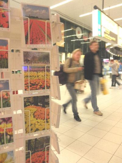 アムステルダム スキポール空港経由 「温もりの国」行き