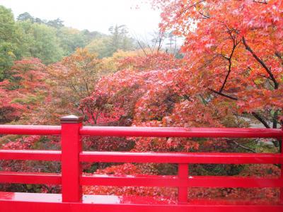 紅葉と初雪を同時に観賞!新潟日帰りバス旅行