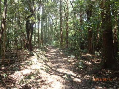 北九州駆け足訪問記(9)山あいの集落を抜けて見晴らし台へ。