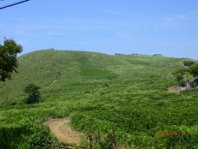 北九州駆け足訪問記(12)大平山「羊群原」を下る。