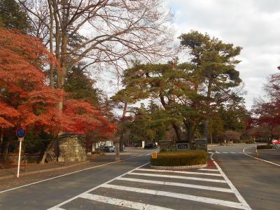 東京のB級でマイナーな観光地めぐり1312  「多磨霊園」  ~府中&小金井・東京~