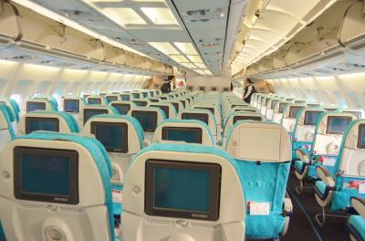 天空のレストラン トルコ航空 (2019.08搭乗分追加)