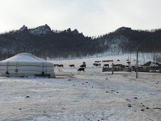 【モンゴル】(2)冬のテレルジ、ゲル宿泊編