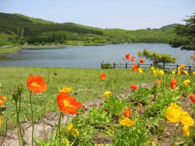 家族旅☆いつもありがとう♪の思いを込めて両親と熊本県阿蘇の黒川温泉(1日目)