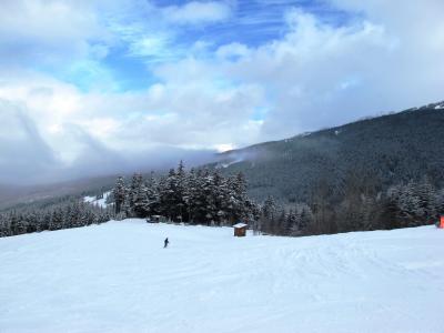 冬のウィスラー(2/全2): ウィスラー山でスキー