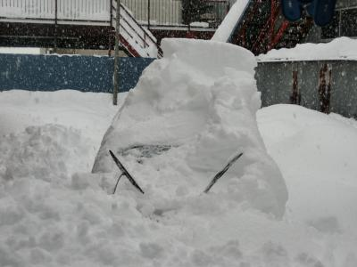 1894年から観測史上最多の雪!!!!!