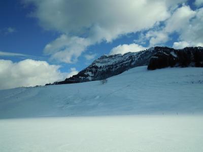 スイス:冬の散歩inゼーボーデンアルプ【スイス情報.com】