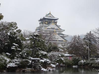 大阪城、雪化粧 2014.2月