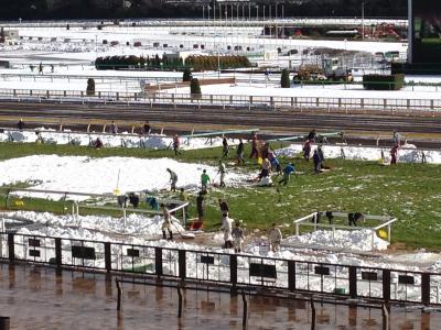大雪かき大会(東京競馬場)