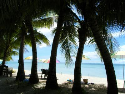 グアム旅行記(2)ココス島
