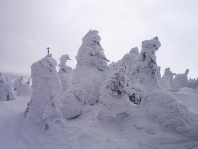 蔵王の樹氷めぐり ~~スノーモンスターの世界~~