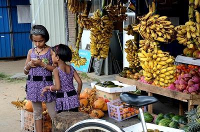 ★スリランカ車旅(7) −トリンコマリーを去る朝