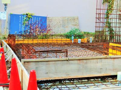 やさしいひとらよ たづねるな!~立原道造記念館と安田講堂の今昔