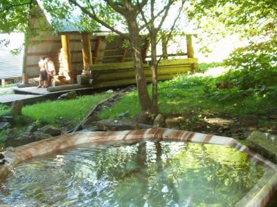 バンクーバー近郊の温泉 2 (Skookumchuck Hot Spring)