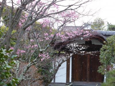 京の冬の旅 第2弾