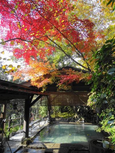 大分&熊本 紅葉と温泉めぐり旅 (5)    【 天ケ瀬温泉 天水でランチ&立ち寄り湯、そして夜明薬湯温泉、それから帰路 】