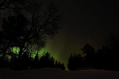 2度目のフィンランド 9日間のんびり旅~2日目 サーリセルカでそり遊び~