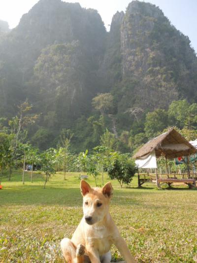 Sabaidee Pimai 2014! ラオスで年越し①~Vang Viengバンビエンでチュービング!
