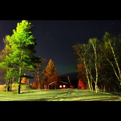 2度目のフィンランド 9日間のんびり旅 ~6日目 吹雪く丘でそり遊び~