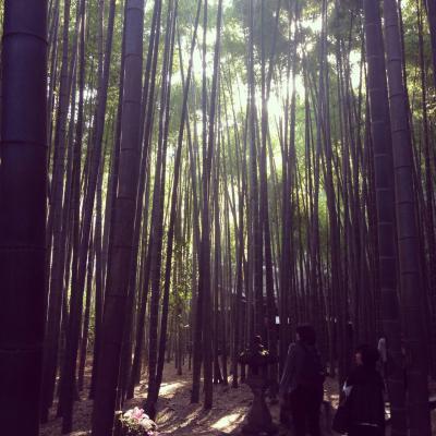 鎌倉半日散策
