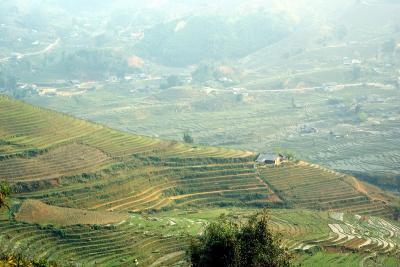 ベトナムと中国(元陽)の旅ー9