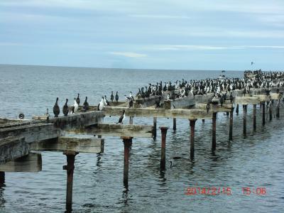 のんびり南米旅その6 プンタアレナス マゼラン海峡をのぞむ