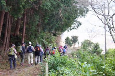 陽春の熊野古道   八鬼山越え (627m)