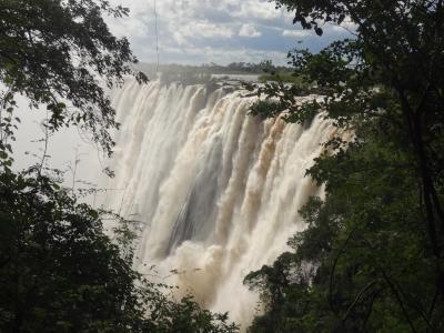 ザンビア側からビクトリア大瀑布を見学した。