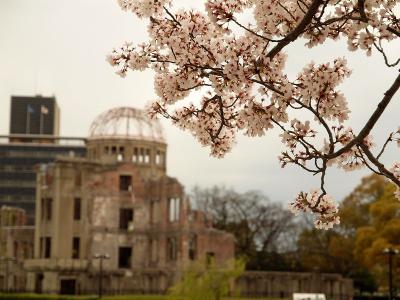 広島桜旅最終章 広島城と平和記念公園の桜 最後はやっぱりお好み焼き