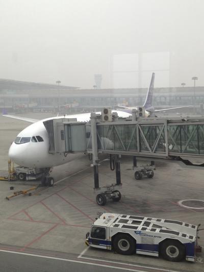 タイ国際航空 成都ーバンコク線搭乗記 TG619 ビジネスクラス