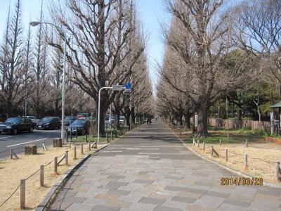 明治神宮外苑を歩きました。