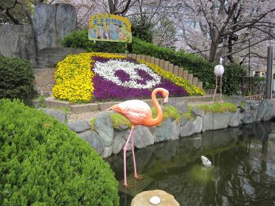 神戸・王子動物園