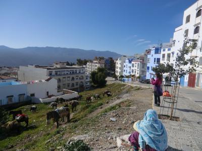 モロッコ9・ブルーの街シャウエン