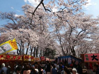 黒磯公園の桜祭り