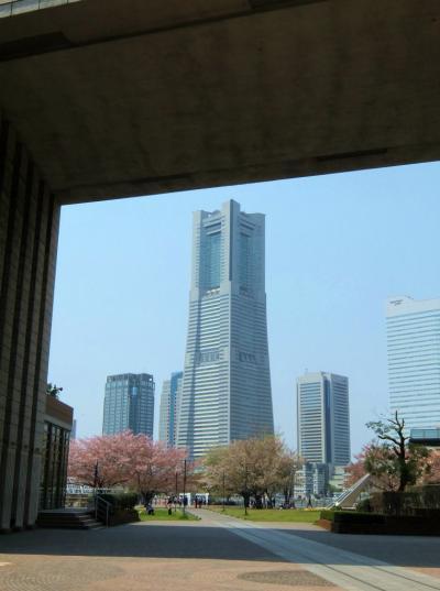 2014 横浜散歩 赤レンガ倉庫で風景を楽しみ桜花の散る汽車道を帰る