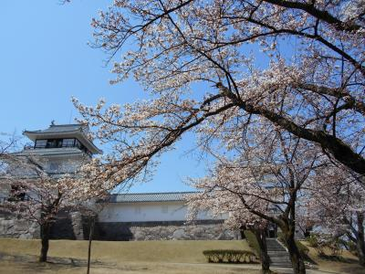 余りに良い天気なので、桜求めて日帰りドライブ♪