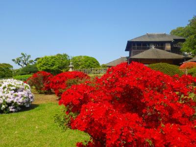 参拝街道を行く!(香取神宮、鹿島神宮、成田山新勝寺で拝みまくらせて頂きました。)