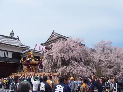 上田城千本桜まつりでお花見