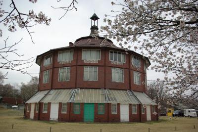 清春芸術村の桜