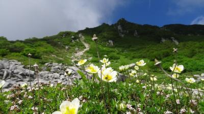 高山植物と雄大な景色に心洗われる−木曽駒ケ岳